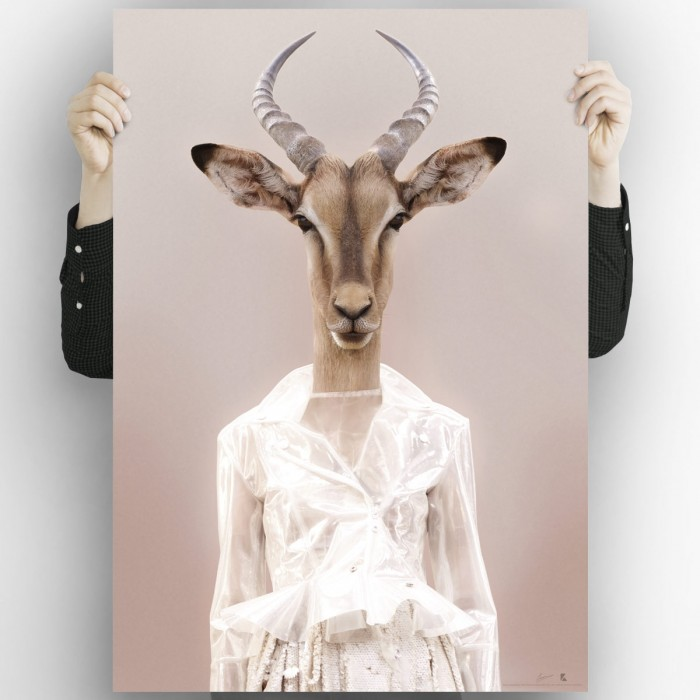 Gazelle Model Photographic poster printing to decorate your spaces with a spectacular design of a fashion gazelle