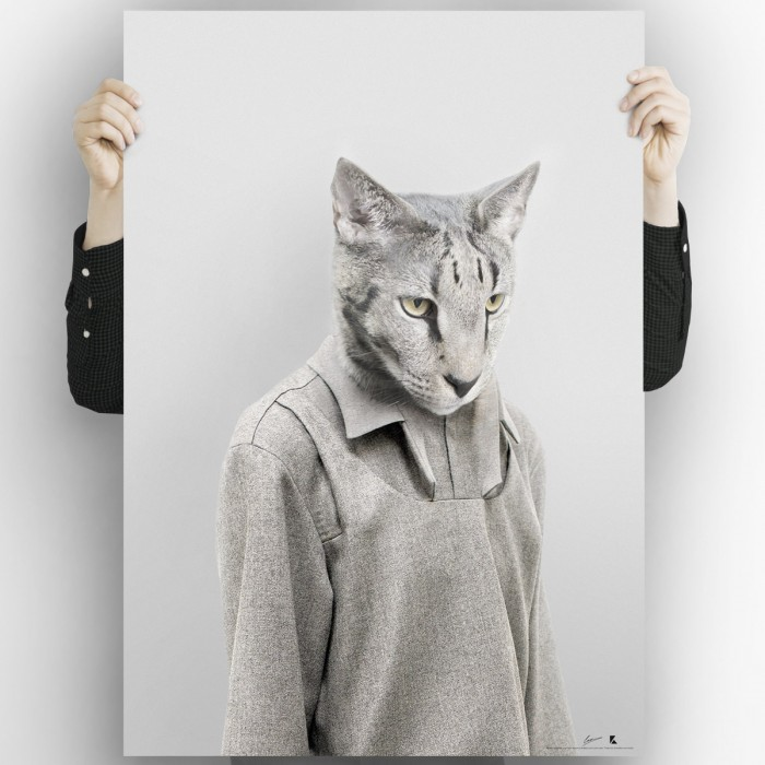 Model cat singapura-poster-washable-high-quality-for-decoration-interior-exterior-modern-original-lokoloko
