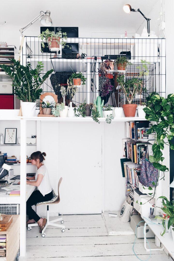 15 ideas para decorar con plantas tu oficina en casa o en el trabajo