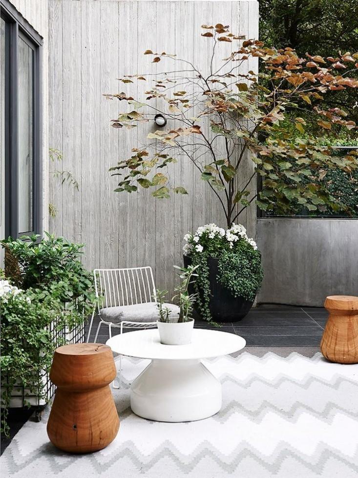 carlton-apartment-garden-hecker-guthrie-gardenista_0