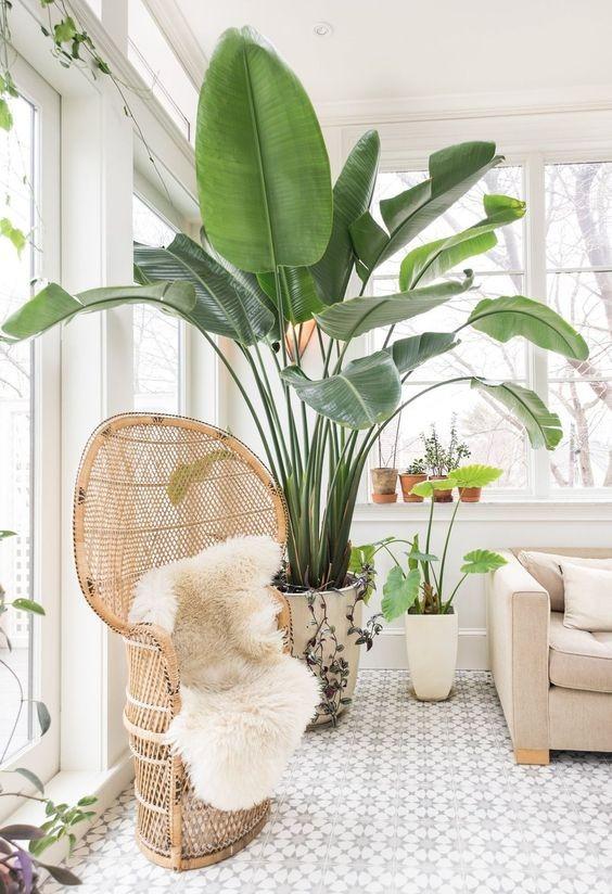 silla-de-mimbre-para-decorar-el-hogar