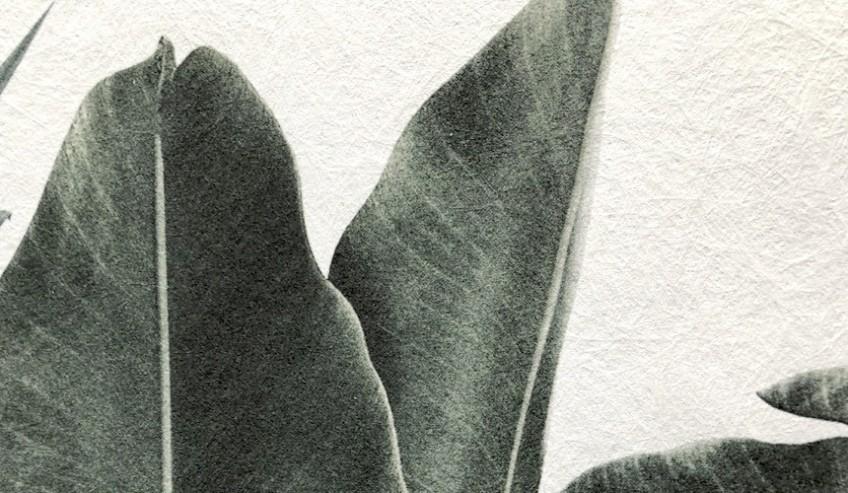 textura-detalle-papel-pared-autoadhesivo-eco-sin-pvc-suave-lokoloko
